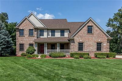 Saline Single Family Home For Sale: 9533 Sandpiper Lane