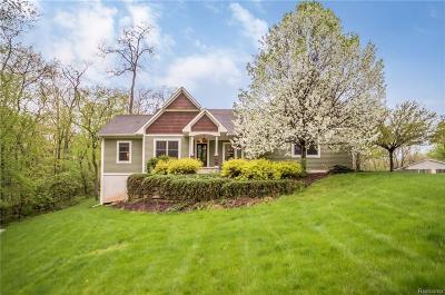 Whitmore Lake Single Family Home For Sale: 6240 Hiawatha Road