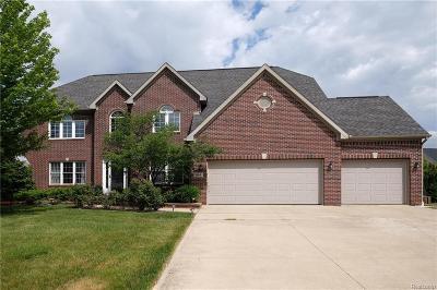 Ann Arbor MI Single Family Home For Sale: $620,000