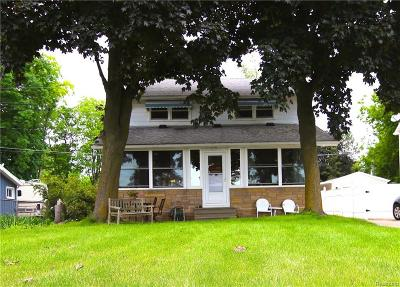Whitmore Lake Single Family Home For Sale: 11952 North Main St
