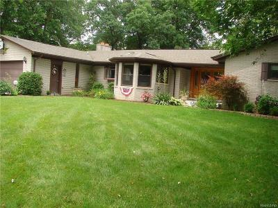 Ypsilanti Single Family Home For Sale: 8371 South Huron River