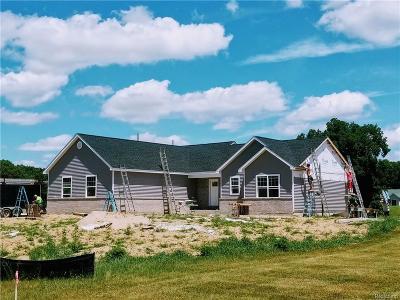 Pinckney Single Family Home For Sale: 45 Celestial Cir