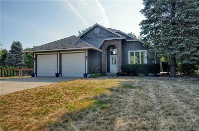 Whitmore Lake Single Family Home For Sale: 11751 Dunlavy Ln