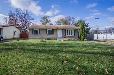 Pinckney Single Family Home For Sale: 367 N Dexter St
