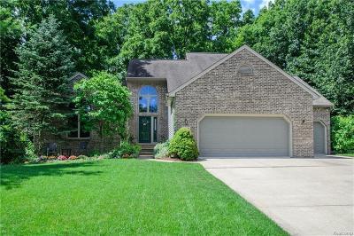 Saline Single Family Home For Sale: 595 Rosebud Crt