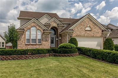 Ypsilanti Single Family Home For Sale: 5531 Redbud Crt
