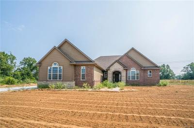 Pinckney Single Family Home For Sale: 3482 Outback Trl
