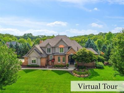 Ann Arbor MI Single Family Home For Sale: $899,000