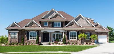 Ann Arbor MI Single Family Home For Sale: $750,000