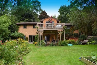 Dexter Single Family Home For Sale: 10023 Huron River Dr