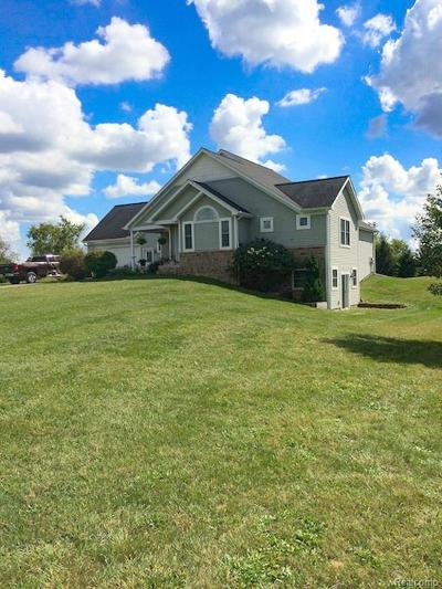 Grass Lake Single Family Home For Sale: 11635 Bohne Rd