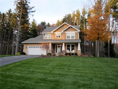Pinckney Single Family Home For Sale: 8718 Sunrise Mist Dr