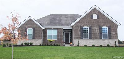 Pinckney Single Family Home For Sale: 8408 Walkabout Way N