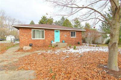 Pinckney Single Family Home For Sale: 4775 Joan Ln