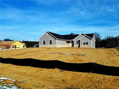 Pinckney Single Family Home For Sale: Celestial Cir