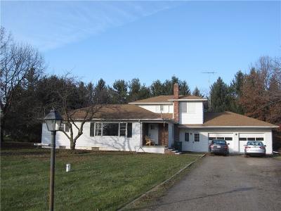 Saline Single Family Home For Sale: 3544 Weber Rd