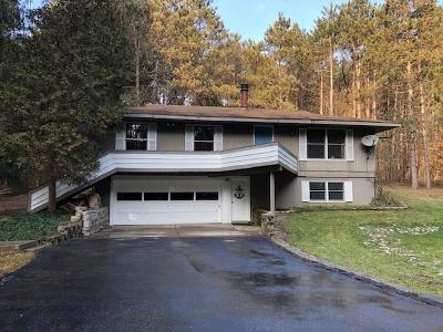 Chelsea Single Family Home For Sale: 18410 Cavanaugh Lake Rd