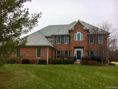 Saline Single Family Home For Sale: 9306 Apple Crest Dr