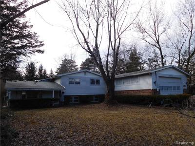 Ypsilanti Single Family Home For Sale: 4900 Munger Rd