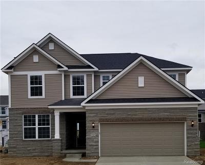 Ann Arbor Single Family Home For Sale: 843 Groveland Cir
