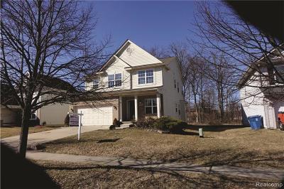 Ypsilanti Single Family Home For Sale: 8581 Barrington Dr