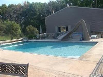 Chelsea Single Family Home For Sale: 7949 Werkner Rd