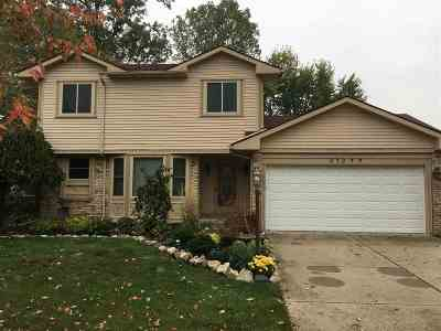 Woodhaven Single Family Home For Sale: 21399 Deerfield