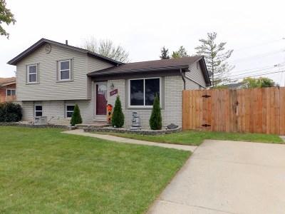 Trenton Single Family Home For Sale: 3341 Benson