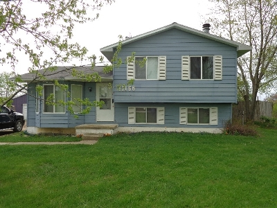 Montrose Single Family Home For Sale: 11166 S Morrish Road
