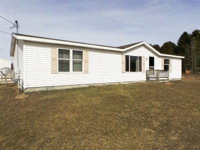 Montrose Single Family Home For Sale: 12300 Lake Road