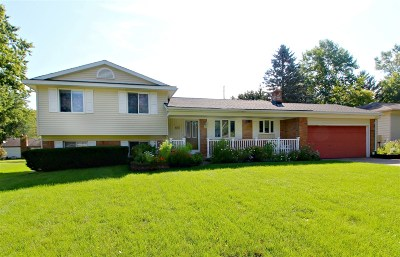 Flushing Single Family Home For Sale: 423 Windmill Point
