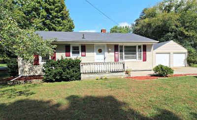 Flushing Single Family Home For Sale: 923 Gerald Street