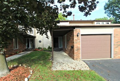 Flushing Single Family Home For Sale: 527 Oakbrook Circle