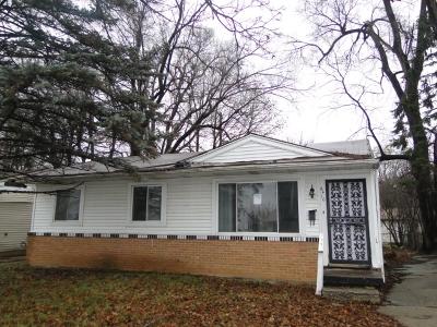 Flint Single Family Home For Sale: 6410 Allison Drive