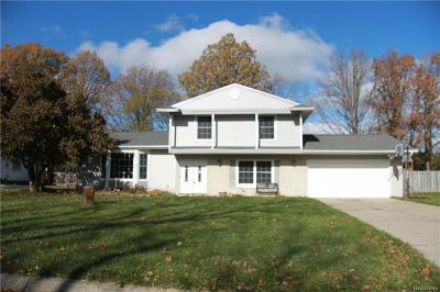 Flint Single Family Home For Sale: 5054 Norris Drive