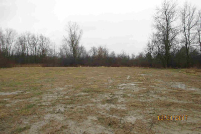 Residential Lots & Land For Sale: 1252 East Frances Road