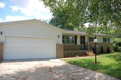 Mt. Morris Single Family Home For Sale: 2474 East Stanley Road
