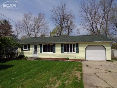 Flushing Single Family Home For Sale: 515 Walnut Street