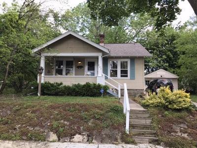 Flint Single Family Home For Sale: 802 Dickinson Street