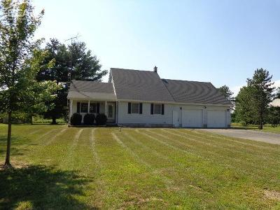 Montrose Single Family Home For Sale: 11435 Duffield Road