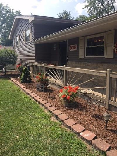Mt. Morris Single Family Home For Sale: 8069 North Webster Road