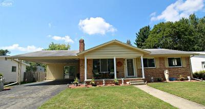 Flushing Single Family Home For Sale: 515 Chestnut Street