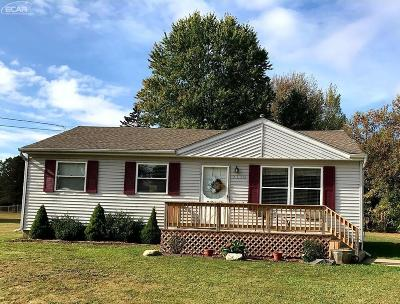 Flushing Single Family Home For Sale: 7113 Randee Street