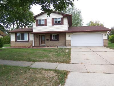 Flushing Single Family Home For Sale: 541 Spring Lane