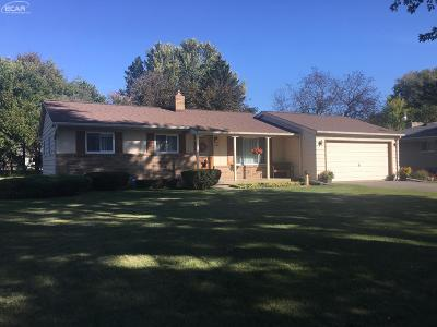 Flint Single Family Home For Sale: 3182 Birchlane Drive