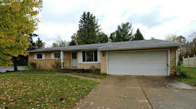 Flushing Single Family Home For Sale: 4236 Marianne Drive