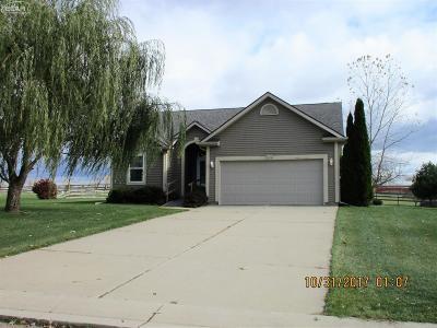 Mt. Morris Single Family Home For Sale: 8030 Southview Meadows Drive