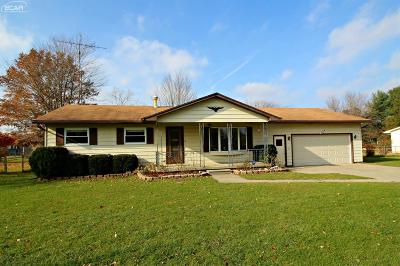 Flushing Single Family Home For Sale: 6463 North Elms Road