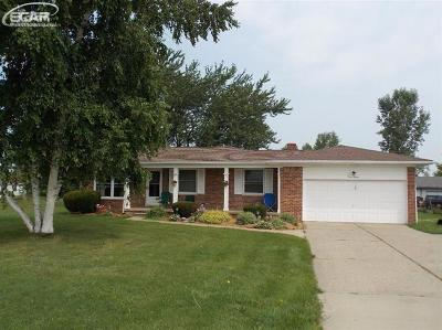 Flint Single Family Home For Sale: 3080 West Hill Road