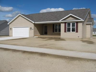 Flushing Single Family Home For Sale: 479 Windy Blf